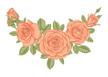 Beautiful bouquet with vintage orange roses and leaves. Floral arrangement. Design greeting card and invitation of the wedding, birthday, Valentine`s Day Stock Images