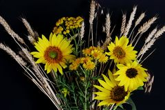 Meadow flowers with wheat spikes and bright yellow sunflowers on dark background. Symbolic concept — summer, country style, sun royalty free stock images