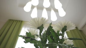 Beautiful bouquet of white chrysanthemums in home interior. stock video footage