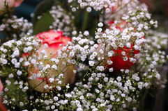 Beautiful bouquet from white flowers and roses. Beautiful bouquet from small white flowers and roses. Selective focus Stock Photo