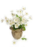 Beautiful bouquet of white flowers Stock Photo