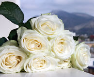 Beautiful bouquet of white roses Stock Images
