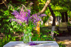 Beautiful bouquet of wild flowers of purple and pink. Bouquet of Stock Image