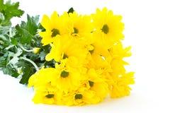 Beautiful bouquet of yellow chrysanthemums Stock Photos