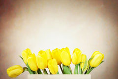 Beautiful bouquet of yellow tulip flowers in the box Royalty Free Stock Photos
