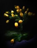 Beautiful bouquet from yellow tulips Stock Image