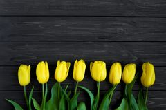 Beautiful bouquet of yellow tulips in a row on table. Top view, flat lay royalty free stock image