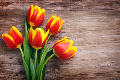 Beautiful bouquet of yellow tulips Royalty Free Stock Photos