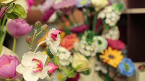 Beautiful bouquets of colorful spring flowers close up.  stock video