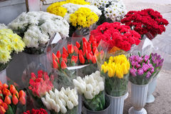 Beautiful bouquets of flowers. Stock Photo