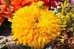 Beautiful bouquets Stock Images