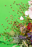 Beautiful bouquets Royalty Free Stock Images