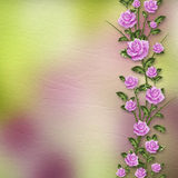 Beautiful bouquets of roses on pastel background Royalty Free Stock Photos