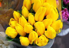 Beautiful bouquets of tulips. Royalty Free Stock Image