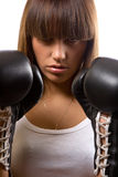 Beautiful boxer Royalty Free Stock Image