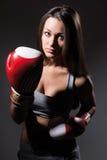 Beautiful boxing girl, fitness Royalty Free Stock Image