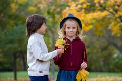 Beautiful boy and girl in a park, boy giving flowers to the girl Royalty Free Stock Photos