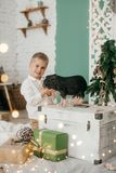 Beautiful boy near a Christmas tree with gifts. Feeding black vietnamese piglet. Concept of the Chinese New Year 2019 of the Pig stock photo