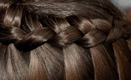Beautiful braid on the girl`s hair. Photos in the studio Stock Photo