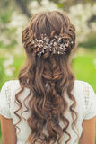Beautiful  braid hairstyle Stock Photos