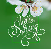 Beautiful branch of a blossoming tree close-up and text Hello Spring. Calligraphy lettering Royalty Free Stock Photos