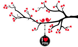 Beautiful Branch with Hanging Love Tag and Love Birds Stock Photos