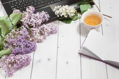 Branch of lilac flowers with pad,tea and laptop Stock Photo