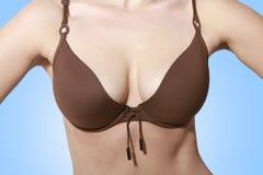 Beautiful breasts in bikini. Beautiful breasts in brown bikini top without a face stock images