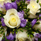 Beautiful bridal bouquet of lilies and roses Royalty Free Stock Photos