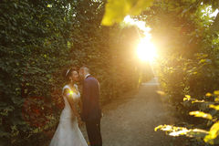 Beautiful bridal couple embracing at dusk in sunlight. Beautiful bridal couple embracing in sunlight Stock Photos