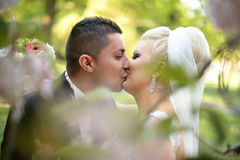 Beautiful bridal couple embracing and kissing in nature Royalty Free Stock Photos
