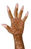 Beautiful bridal hand stock photos
