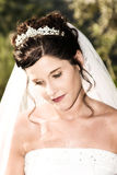 Beautiful Bride Stock Photos