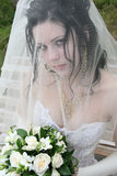 Beautiful bride Stock Images