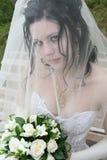 Beautiful bride. Under bridal veil Stock Images