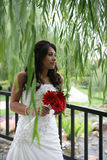 Beautiful bride. Beautiful attractive bride holding bouquet of red flowers standing under weeping willow tree Royalty Free Stock Photo