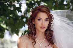 Beautiful bride. The beautiful bride on a green background Royalty Free Stock Images