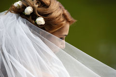 Beautiful bride. The beautiful bride on a green background Stock Image