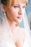 Beautiful bride. Is standing in wedding dress Royalty Free Stock Image