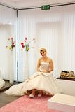 Beautiful Bride. Royalty Free Stock Image