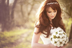 Free Beautiful Bride Stock Photo - 23870980