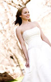 Beautiful Bride. A beautiful bride looking out royalty free stock images