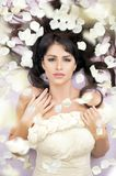 Beautiful bride. Among rose petals Stock Photography