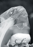 Beautiful bride. Portrait of the beautiful bride with a bouquet Stock Image