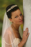 Beautiful bride. Portrait of the beautiful bride Stock Photography