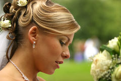 Beautiful bride. The beautiful bride on a green background Royalty Free Stock Photography