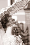 Beautiful bride Stock Photos