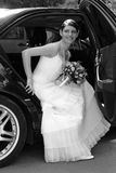 Beautiful Bride. A portrait of a beautiful bride wearing a traditional white wedding dress. She is getting out of a black wedding car limousine Stock Photography