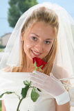 Beautiful Bride. Young bride posing in the wedding day Royalty Free Stock Photography