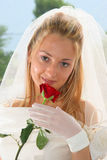 Beautiful bride. Posing in the wedding day Stock Images